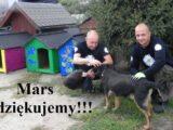 mars7