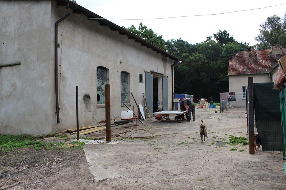 brodziszewo6