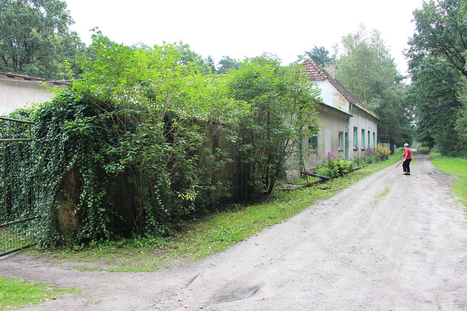 brodziszewo7